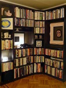 Delphine_bookcase