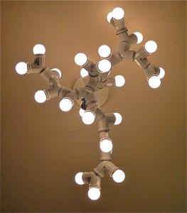 Delphines_ceiling_fixture